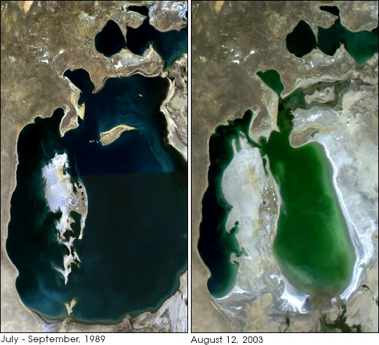 The Aral sea between 1989 and 2003.(Nasa Earth Observatory)