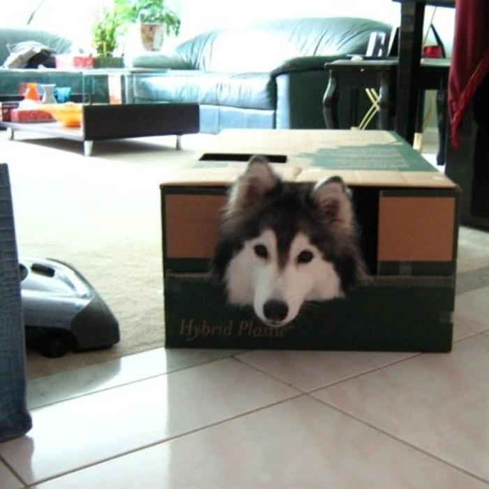 tallyboxolder